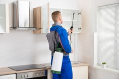 Hiring the best pest control Boise service is the most effective way of dealing with pest infestations. Pests like ants, cockroaches, beetles, flies, rodents. Best Pest Control, Pest Control Services, Bug Control, Types Of Bugs, Types Of Insects, Termite Control, Bees And Wasps, Pest Management, Humming Bird Feeders