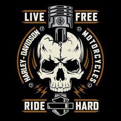 Harley Davidson News Harley Davidson Logo, Harley Davidson Kunst, Harley Davidson Tattoos, Classic Harley Davidson, Harley Davidson Chopper, Harley Davidson Motorcycles, Harley Davidson Wallpaper, Triumph Motorcycles, Vintage Logo