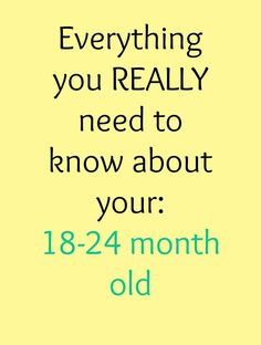 Fantastic post on the major things parents and caregivers working with 18-24 month olds should know!