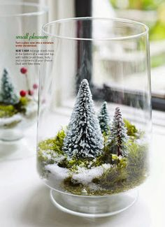 Turn a glass vase into a miniature winter wonderland. Too late for this Christmas but will do next year. Directions: Arrange sheet moss in the bottom of a vase and top with bottle brush trees, holly and ornaments of your choice. Dust with fake snow. Noel Christmas, Modern Christmas, All Things Christmas, Winter Christmas, Christmas Crafts, Christmas Ornaments, Miniature Christmas Trees, Christmas Goodies, Vintage Christmas