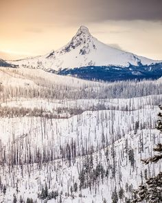 Mt. Washington in Central Oregon. Just West of Sisters, Oregon. -------- @ richbacon