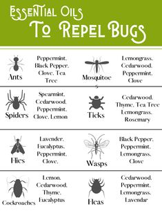 How To Stay Healthy, Healthy Life, Remedies For Mosquito Bites, Health Advice, Women's Health, Doterra Essential Oils, Green Life, Natural Cures, Herbal Medicine