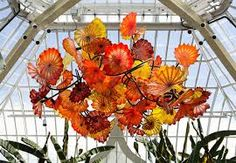 Image result for dale chihuly sculptures