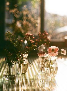pretty vases in the sunlight....