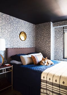 Bedroom with lots of pattern and dog