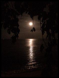 Magical night at the Black Sea by Dan Cristian Mihailescu