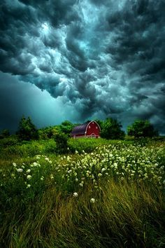 Riding the Storm by Phil Koch