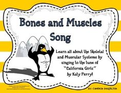 "Bones and Muscles Song (Skeletal and Muscular Systems) sing to the tune of ""California Girls"" by Katy Perry"