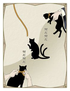 3 black cats. ikimononekosure.