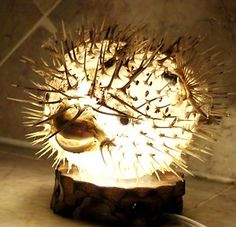 Taxidermy Blowfish Lamp