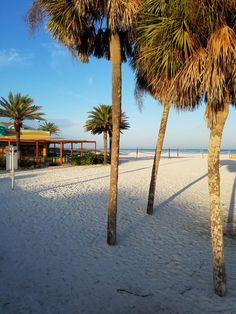 Sunrise on Clearwater Beach, Florida St Pete Beach, Clearwater Beach, Florida Home, Florida Beaches, Oh The Places You'll Go, Sunrise, Wanderlust, Outdoor, Outdoors
