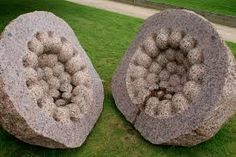 This is a sculpture by Peter Randall. It is based of a pant with seeds inside of it. I like how he has made too separate pieces too show the inside seeds of the plant. It is made of rock and the texture seems quite rugged and hard. I like this piece because it looks very realistic like a giant plant.