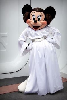 Does this go in the Disney or Star Wars board? Hmm...