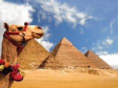 Day Tour to Giza Pyramids and Egyptian Museum from Port Said ...