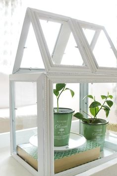 Old picture frames are a dime a dozen at yard sales, flea markets and thrift store. Emily of The Wicker House gathered a bunch and made this pretty indoor terrarium. New Uses for Old Household Items | Apartment Therapy