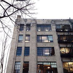 Blond brick and black metal window frames