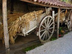Museo della Civiltà Contadina  #GreenWhereabouts #ecomuseo #CulturaContadina #RuralLife