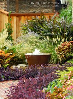 Guest lani garden area:  Imagine this layered, dense look with tropicals and fitting stone.  Love the cute curved path and how the water feature is in with the plantings...could use the bubbling boulder type feature here or the water/fire pot feature