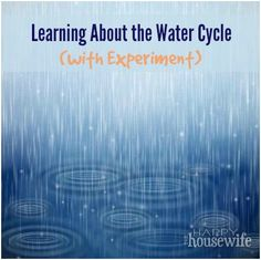 Learning About The Water Cycle (experiment)