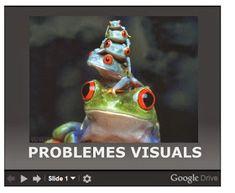 Cat, Animals, Brain, Games, Animales, Animaux, Cat Breeds, Animal Memes, Animal