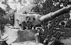 Poland Summer 1944, SS Pz. Regiment 3, 9th company, Totenkopf.