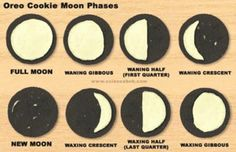 Hahaha! My fourth grade science teacher should've tought us the phases of the moon with Oreos instead of a song!!