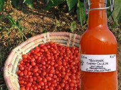"""Fermented """"Louisiana-style"""" Hot Sauce 