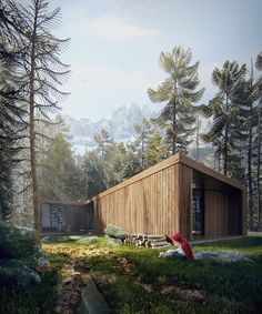 Red Riding Hood New House by Sérgio Merêces, via Behance