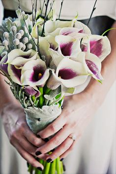 callas and silver brunia - love the dusty miller wrap!