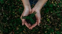 Start your new green lifestyle with these 10 easy things you can do right now to be more environmentally friendly! Take the first step toward a greener life Happy Earth, Earth Day, Planet Earth, Sustainable Living, Sustainable Fashion, Free Images, Hand Images, Free Photos, Sustainability