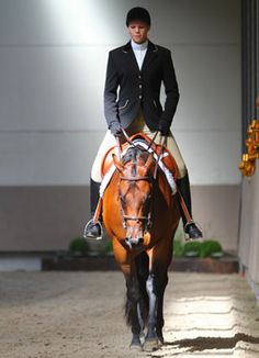 On the rail. On the rail. - Art Of Equitation Hunter Under Saddle, Hunt Seat, Riding Habit, Hunter Jumper, Horse Pictures, Horse Love, Show Horses, Horse Riding, Dressage