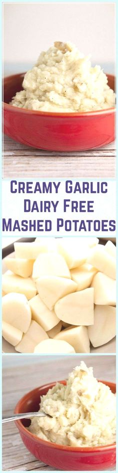 Creamy Garlic Dairy Free Mashed Potatoes you won't believe how good these are! Dairy Free Appetizers, Dairy Free Snacks, Dairy Free Breakfasts, Dairy Free Recipes, Dairy Free Overnight Oats, Dairy Free Mashed Potatoes, Dairy Free Chocolate Cake, Dairy Free Soup, Lactose Free Diet