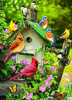 Singing Around the Birdhouse 35 Piece Sequenced Jigsaw Puzzle for Dementia and Alzheimers -- You can get additional details at the image link.