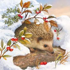 4 x Single Paper Table Napkin/Decoupage/Scrapbooking/Hedgehog in Snow Hedgehog Art, Cute Hedgehog, Christmas Animals, Christmas Pictures, Christmas Art, Holly Christmas, Holiday, Illustration Noel, Christmas Illustration