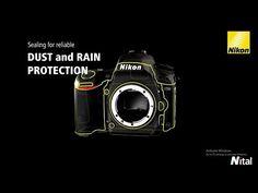 Nikon D750 Tutorial   TVideo.Net