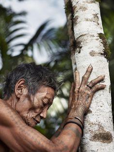 Sacred tree and  Aman Bajik - Mentawai tribe member, Rorogot clan. Siberut, Indonesia   www.villabuddha.com  huur onze villa op Bali aan het strand  € 1495,- per week inclusief personeel en chauffeur