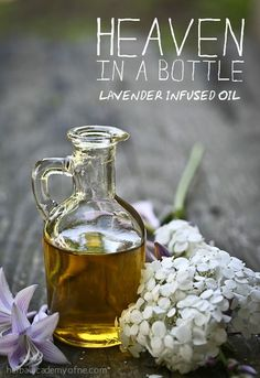 "Lavender Infused Oil Recipe AKA ""Heaven in a Bottle"" - Herbal Academy"