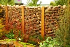 More gabion wall. This is clever garden screen. How much heat might these stones store? Back Gardens, Outdoor Gardens, Stone Store, Stone Edging, Garden Screening, Screening Ideas, Organic Insecticide, Gabion Wall, Rustic Fence