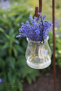 I have about a dozen of these shepard's hooks...could make a bunch of these vases for gifts...