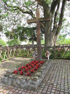 Eger, a vár Bebek-bástyája - Gárdonyi Géza sírja Hungary, Sidewalk, Plants, Side Walkway, Sidewalks, Planters, Pavement, Walkways, Plant