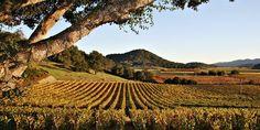 15 Reasons We're Crushing on Calistoga Ranch This Harvest Season