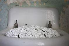 Ai Weiwei, Blossom, 2014 (installation detail, Alcatraz Hospital)