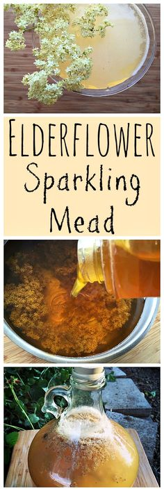 Make this light and refreshing sparkling mead with foraged elderflowers!