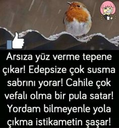 Arkadaşlar a dikkat et Good Sentences, Meaningful Quotes, Cool Words, Karma, Favorite Quotes, Islam, Food And Drink, Bandana, Proverbs Quotes