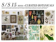 SS15 Curated Botanicals prints