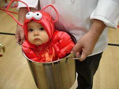 29 scary halloween costumes for kids!DIY Halloween costumes for kidsno sewing necessary! internet at large there are so many great ideas for DIY Halloween costumes out there. Halloween Kostüm Baby, Halloween Mignon, Lobster Halloween, Happy Halloween, Homemade Halloween, Group Halloween, Homemade Costumes, Feliz Halloween, Unique Halloween Costumes