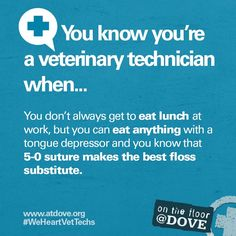 You know you are a veterinary technician when...