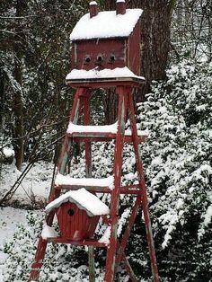 birdhouse ladder
