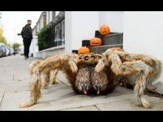 Monster Spider Halloween Prank In London | Bored Panda Halloween Pranks, Halloween Spider, Bored Panda, London, London England