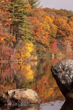Location of Birch pond in my current article, enjoy!  Rocks on Birch pond reflecting foliage
